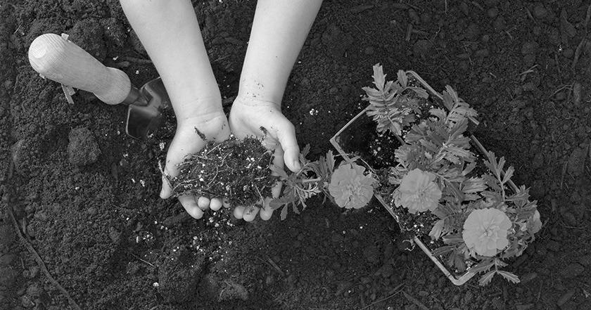 Jardinage avec enfants