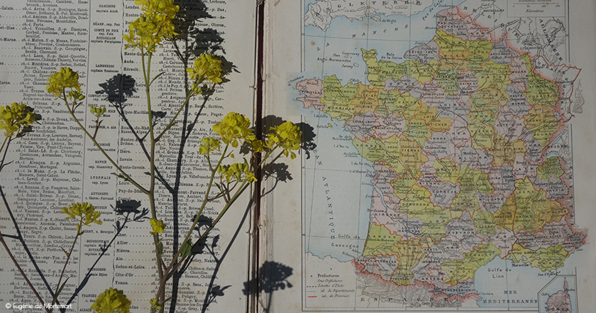 Exposition - Charente-Maritime