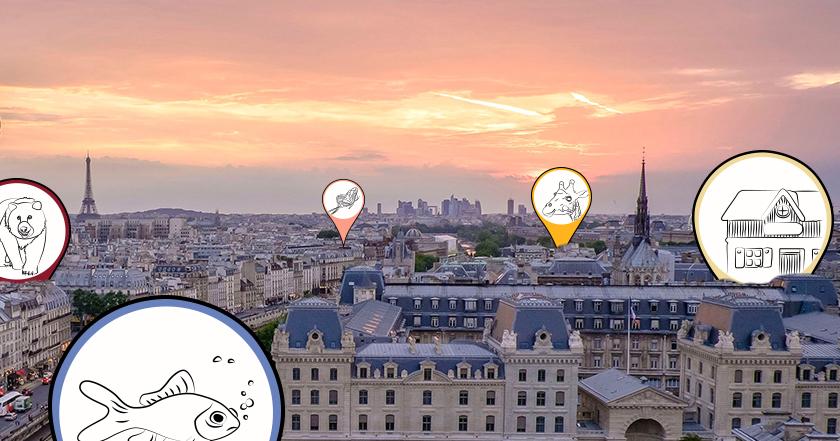 Voir animaux Paris enfants