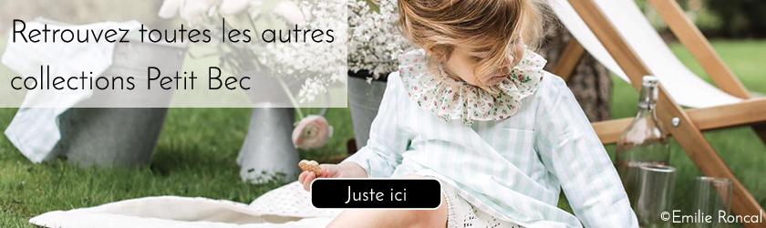 BANNIERE-Petit Bec