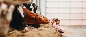 Un salon de l'agriculture familial