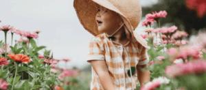Le top 5 des Jardins de France à découvrir