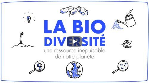 MUSTELA - biodiversité_miniature-02