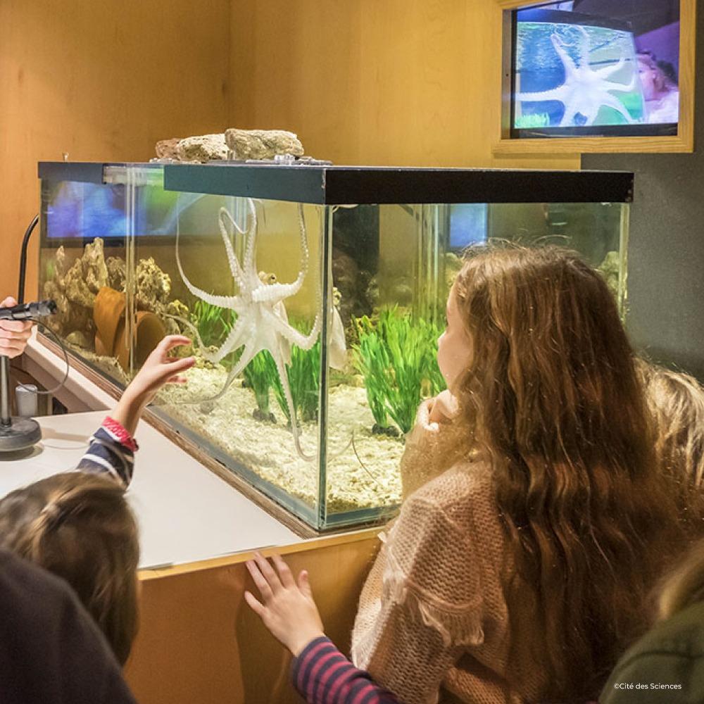 Apprenez la communication animale à vos Petits-Enfants au Palais de la découverte