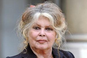 Brigitte Bardot : Grand-Mère célèbre