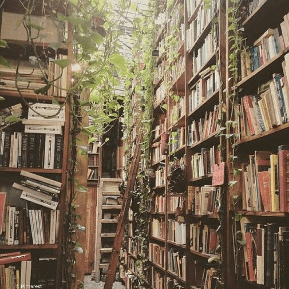 bibliothèque Petits-Enfants