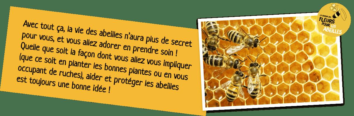 composition abeille miel